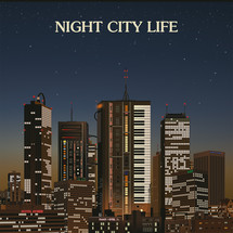 VA - Night City Life (by Ilan Pdahtzur) [2LP]